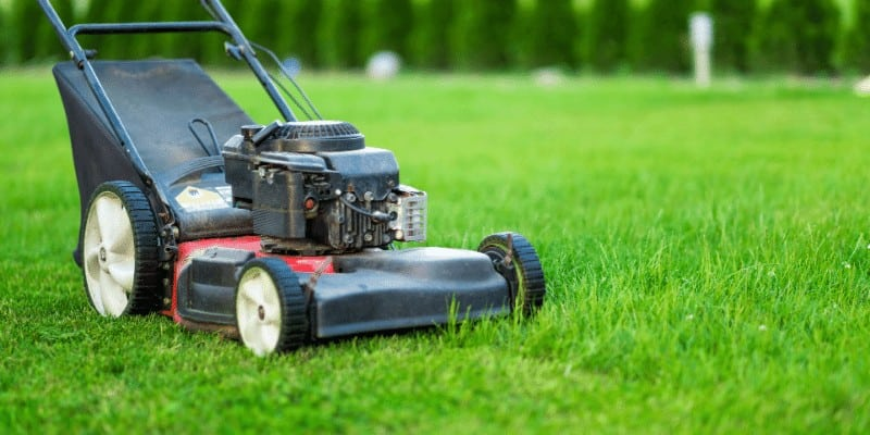 Can You Use 10W30 Instead of SAE30 in Lawn Mower