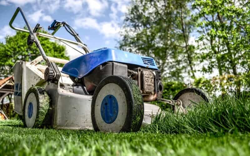 Can You Use 10W30 Instead of SAE30 in Lawn Mower? A Short Guide