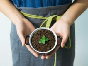 Why is potting soil easier than garden soil