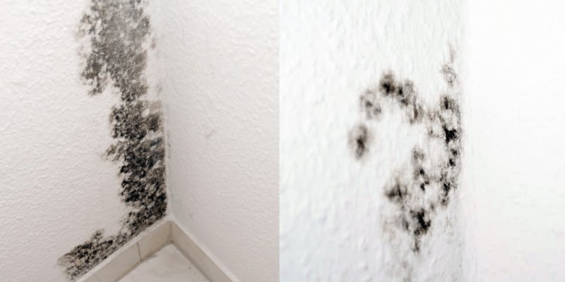 How to Get Rid of Mildew Smell in Bathroom